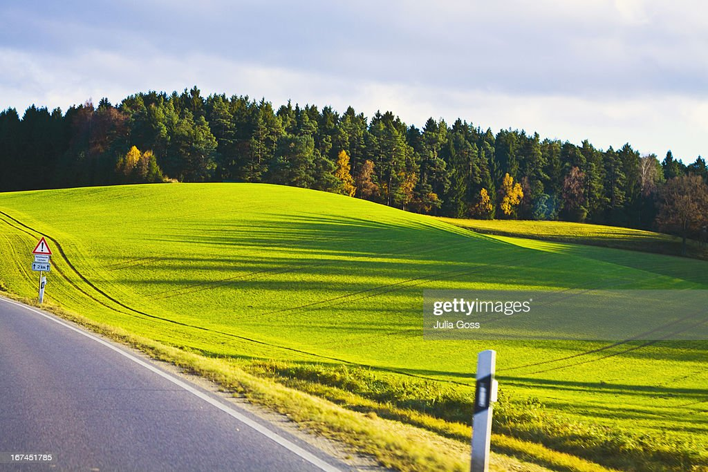Roadside and green pasture bavaria : Stock Photo