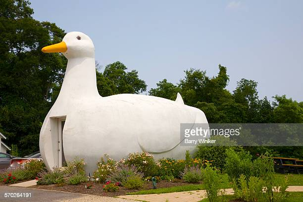 Roadside Big Duck, Flanders, NY