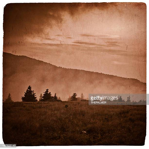 Roan Mountain State Park: Appalachian Mountains Stock Photos And Pictures