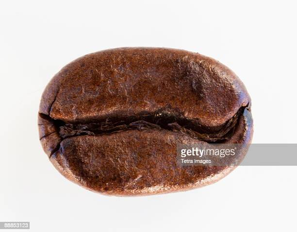 Roast coffee bean, studio shot