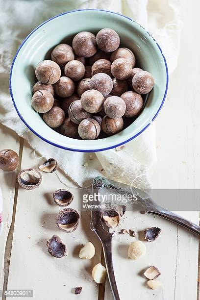 Roasted and salted macadamia nuts in shells, studio