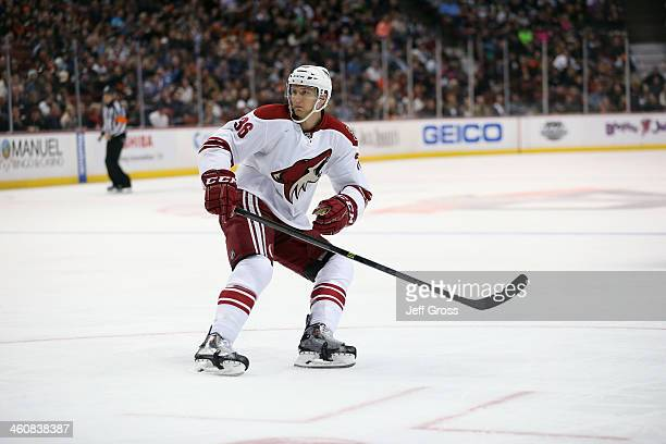 Rob Klinkhammer of the Phoenix Coyotes skates against the Anaheim Ducks at Honda Center on December 28 2013 in Anaheim California