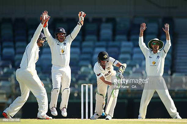 Rob Quiney Aaron Finch and Glenn Maxwell of Victoria appeal for the wicket of David Moody of Western Australia during day three of the Sheffield...