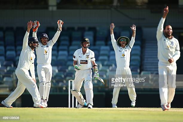 Rob Quiney Aaron Finch Glenn Maxwell and Fawad Ahmed of Victoria appeal for the wicket of David Moody of Western Australia during day three of the...