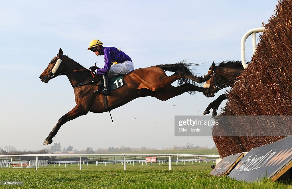 Robbie McNamara on Spring Heeled leads all the way on their way to victory in the Fulke Walwyn Kim Muir Challenge Cup Handicap Chase at Cheltenham Racecourse on March 13, 2014 in Cheltenham, England.
