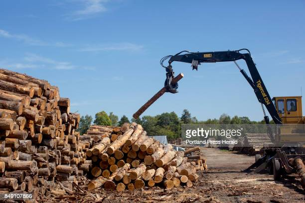 Robert Bailey the woodyard manager at Treeline Inc breaks down some of the logs into different sizes and moves them into piles The company which is...