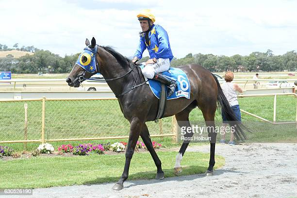 Robert Beattie returns to the mounting yard on Tycoon after winning Bill McGrath Engineering FM Maiden Plate at Wodonga Racecourse on December 26...