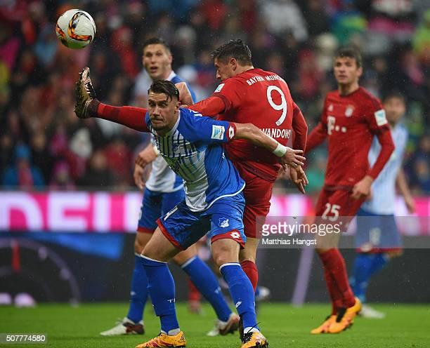Robert Lewandowski of Bayern Munich battles with Ermin Bicakcic of Hoffenheim during the Bundesliga match between FC Bayern Muenchen and 1899...