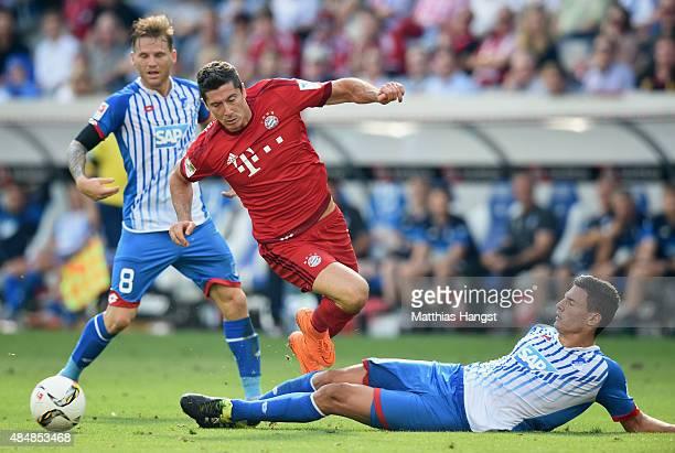Robert Lewandowski of Muenchen is challenged by Fabian Schaer of Hoffenheim during the Bundesliga match between 1899 Hoffenheim and FC Bayern...