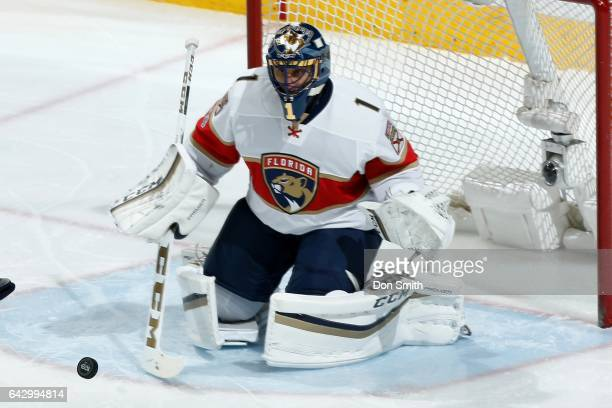 Roberto Luongo of the Florida Panthers gets ready to make a save during a NHL game against the San Jose Sharks at SAP Center at San Jose on February...