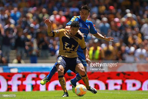 Robin Ramirez of Pumas struggles for the ball with Juninho of Tigres during a match between Pumas and Tigres as part of the Clausura 2013 Liga MX at...