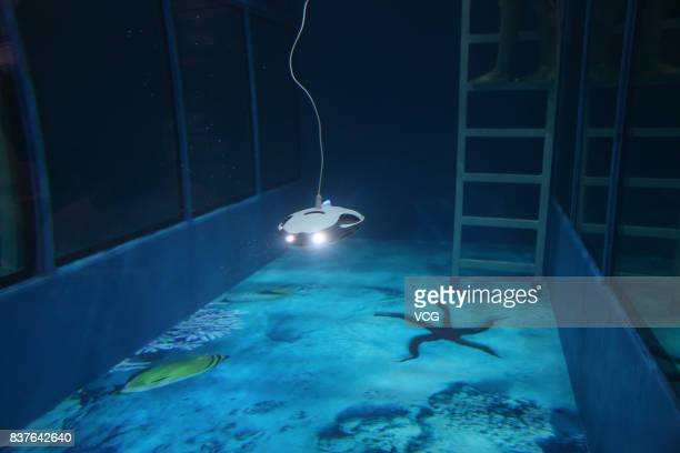 A robot dives in a pool at the World Robot Conference 2017 is held at Etrong International Exhibition Convention Center on August 22 2017 in Beijing...