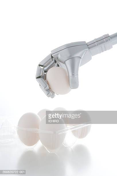 Robotic arm holding egg