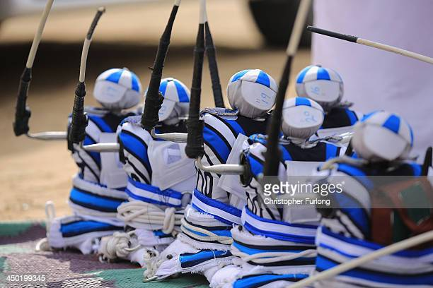 Robotic jockeys are lined up ready to be strapped to camels at the Dubai Camel Racing Club during the Al Marmoum camel racing season on November 17...