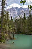 Robson River at the Kinney Lake Trail and Mount Robson, Canada