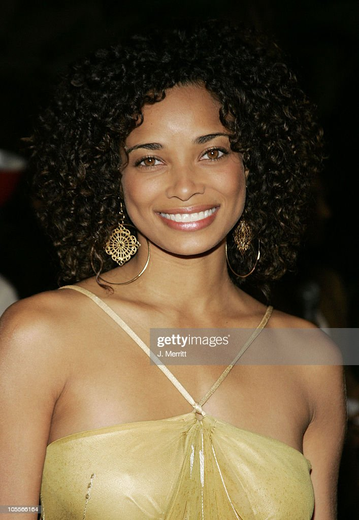 Rochelle Aytes during 12th Annual Diversity Awards Arrivals at The Beverly Hills Hotel in Beverly Hills California United States