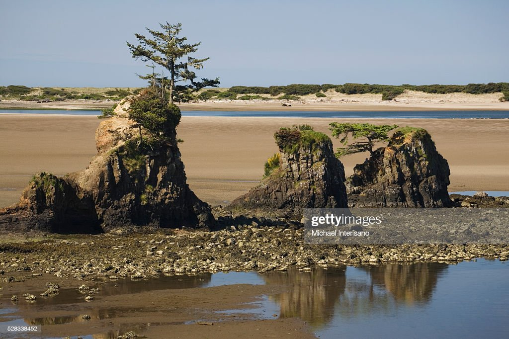 Rock Formations At Low Tide Along A Rocky Shoreline On A Beach; Lincoln City Oregon United States Of America