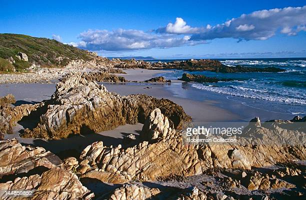 Rock Formations on Beach Hermanus Garden Route South Africa