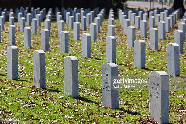 Rock National Cemetery, soldiers' gravestones