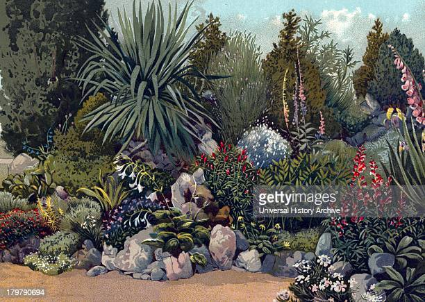 Rockery in gardens of the Royal Horticultural Society Chiswick London 1897