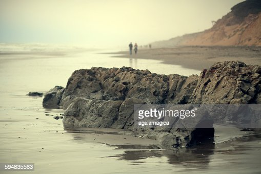 Rocks on beach, San Francisco, California, USA
