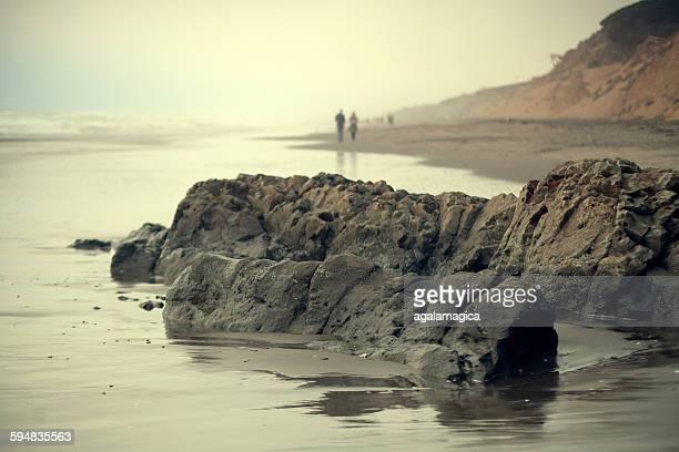 Rocks on beach, San Francisco, California, USA