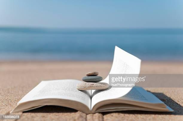 Rocks de libro