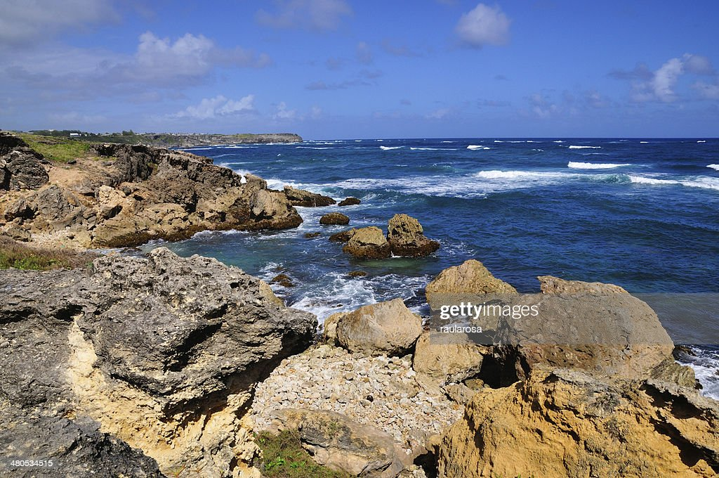 Rocky beach edge : Stock Photo