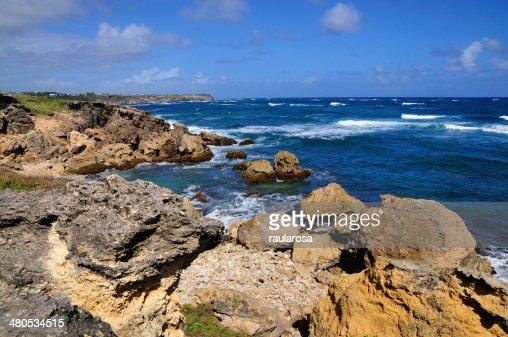 Rocky beach edge : Stock Photo