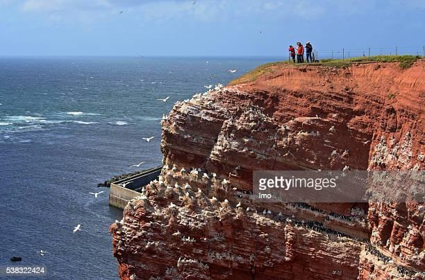Felsenküste auf Helgoland, Nordsee, Deutschland