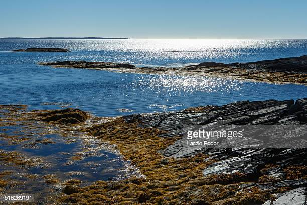 Rocky coastal scene in Blue Rocks