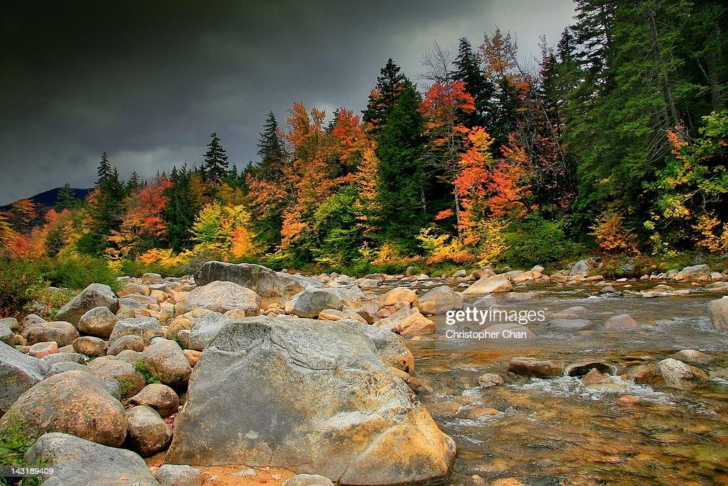 Rocky gorge with autumn foliage