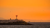 A rocky jetty during sunset with sea birds flying