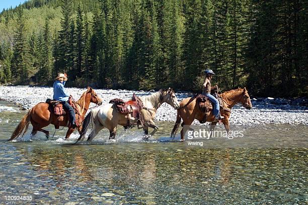 Rocky Mountain caballo Riders fording un río poco profundo en verano