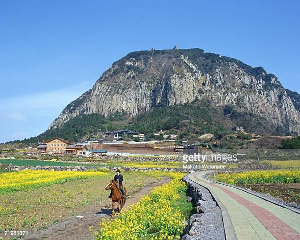 Rocky mountain in Jeju, Korea