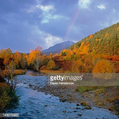 Rocky river and autumn trees in rural landscape : Stock Photo