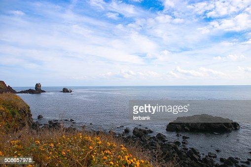 Rocky seascape at jeju : Stock Photo