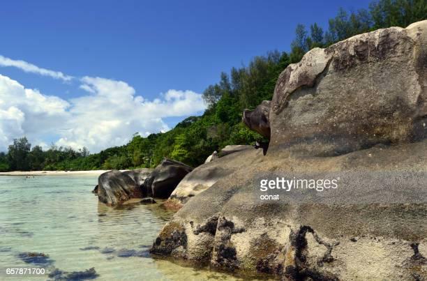 Rocky seashore