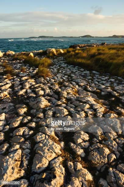 Rocky shoreline near Devil's Bridge, Saint Philip Parish, Antigua
