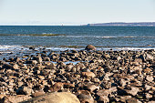 Rocky stretch of beach in Parker River Wildlife Refuge with distant view of Cape Ann