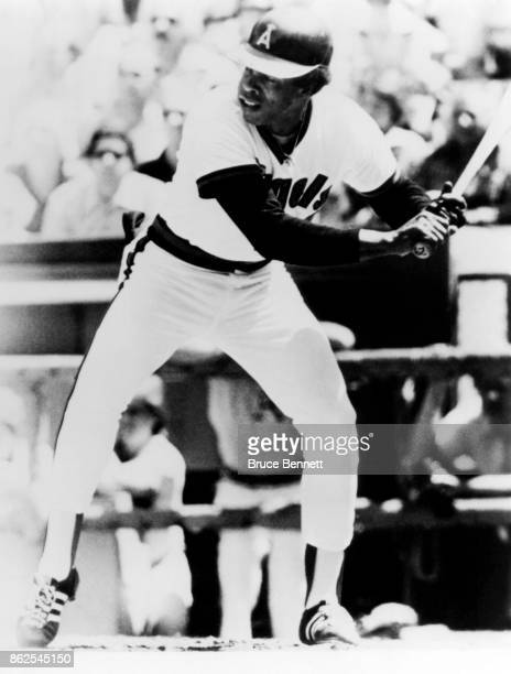 Rod Carew of the California Angels bats during an MLB game against the Oakland Athletics circa 1980 at Anaheim Stadium in Anaheim California