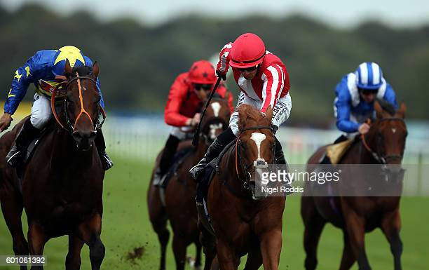 Rodaini riden by Silvestre De Sousa wins The Weatherbys Stallion Book Flying Scotsman Stakes at Doncaster Racecourse on September 9 2016 in Doncaster...