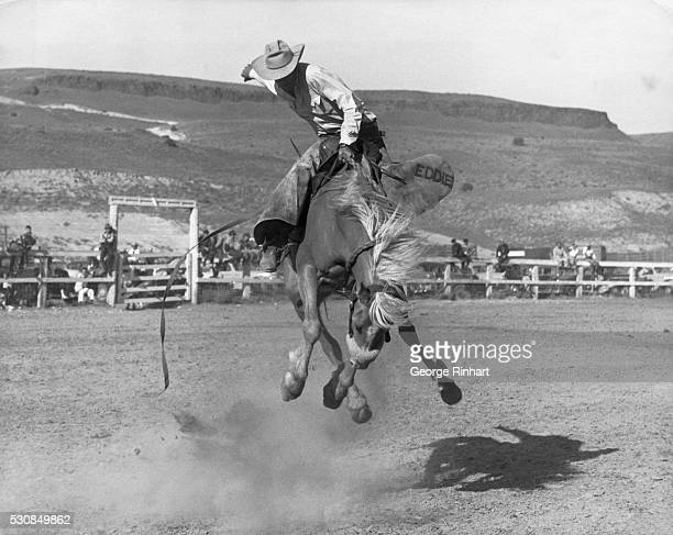Rodeo Performer Eddie Hoyt Riding 'Goldilocks' | Location Arlington Oregon USA