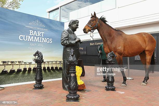 Rogan Josh 1999 Melbourne Cup winner under trainer Bart Cummings visits the Bart Cummings Statue during Melbourne Racing at Flemington Racecourse on...