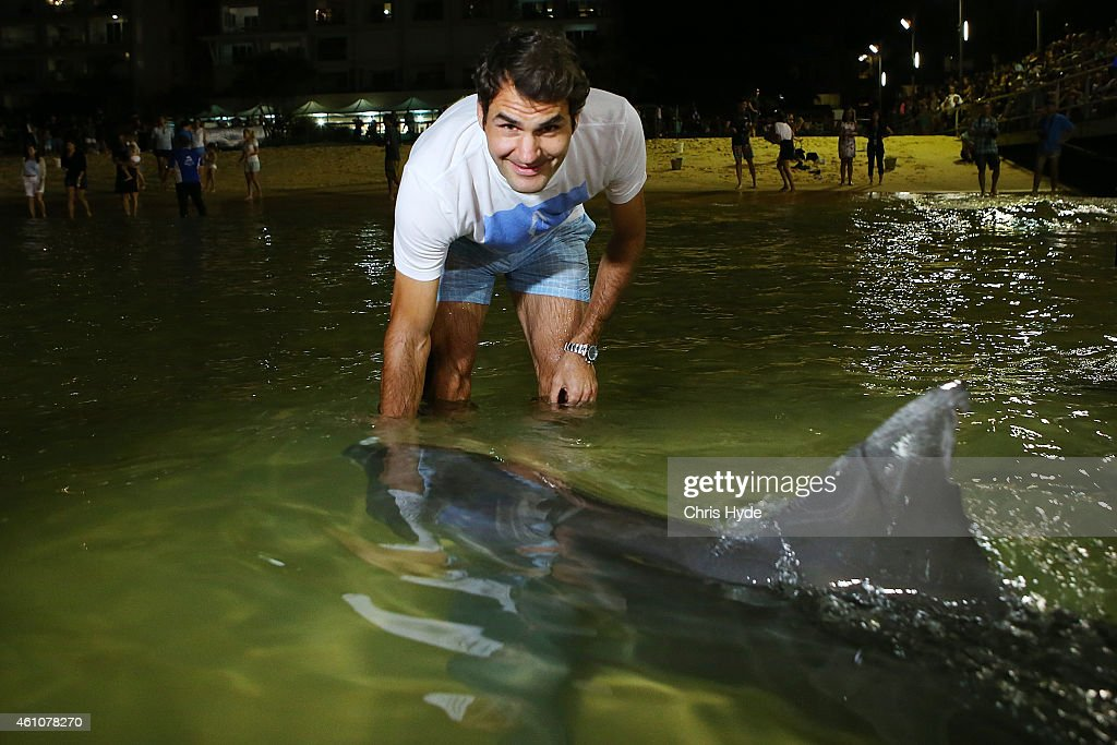 <a gi-track='captionPersonalityLinkClicked' href=/galleries/search?phrase=Roger+Federer&family=editorial&specificpeople=157480 ng-click='$event.stopPropagation()'>Roger Federer</a> enjoys time off Brisbane International 2015 feeding wild dolphins on Tangalooma Island Resort on January 6, 2015 in Brisbane, Queensland, Australia. The tennis legend started his 2015 campaign (ahead of the Brisbane International) with some mental relaxation and the chance to feed the wild dolphins at Tangalooma Island Resort on Moreton Island, a 75 minute boat ride from Brisbane.