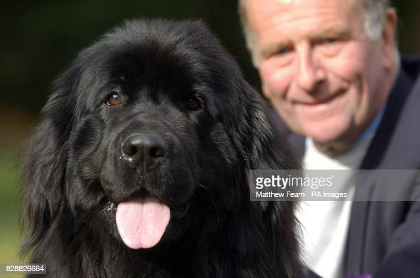 Roger Gale MP and his Newfoundland bitch 'Lulu' after winning the Westminster Dog of the Year in London's Victoria Tower Gardens