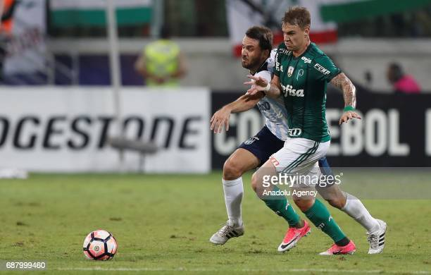 Roger Guedes of Palmeiras in action against Canuto of Atletico Tucuman during Copa Libertadores of America match between Palmeiras and Atletico...