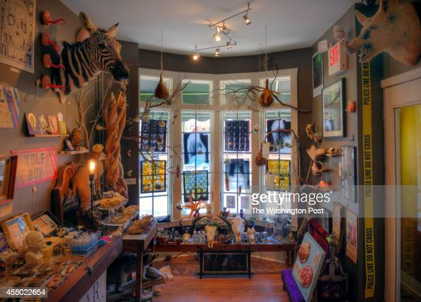 Rogue taxidermy and other curiosities at a shop called Bazaar owned by Greg Hatem and Brian Henry on September 2014 in Baltimore MD Pictured interior...