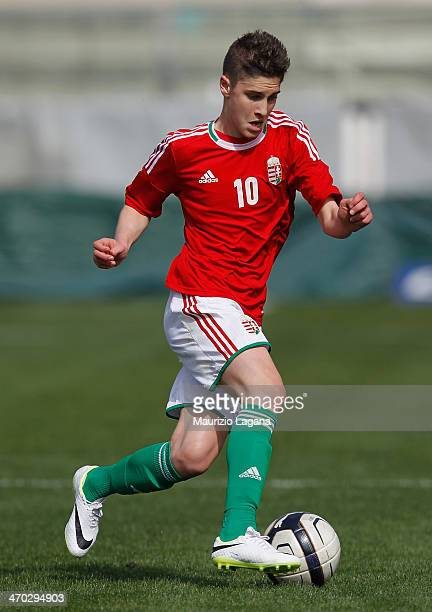 Roland Sallai of Hungary during the international friendly match between Italy U17 and Hungary U17 at Stadio Oreste Granillo on February 19 2014 in...