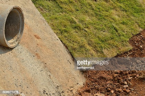 Rolled sod : Stock Photo